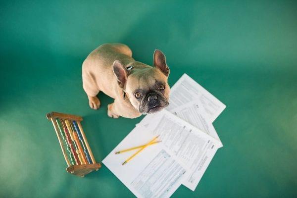 year-end tax planning checklist